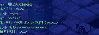 足乗りリス(*´д`*)