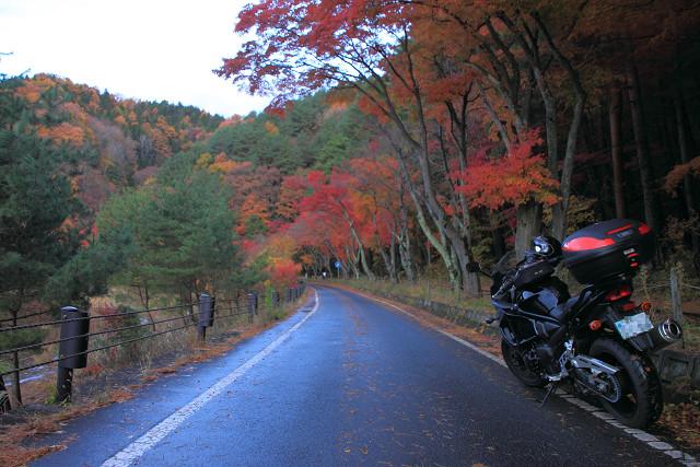 秋の信州005
