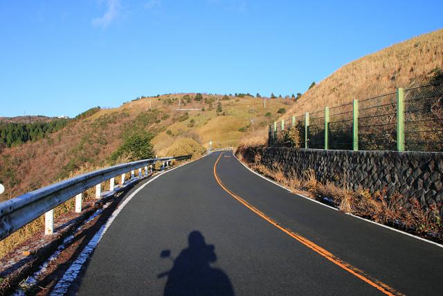 神奈川010