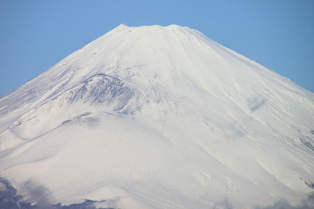 神奈川013
