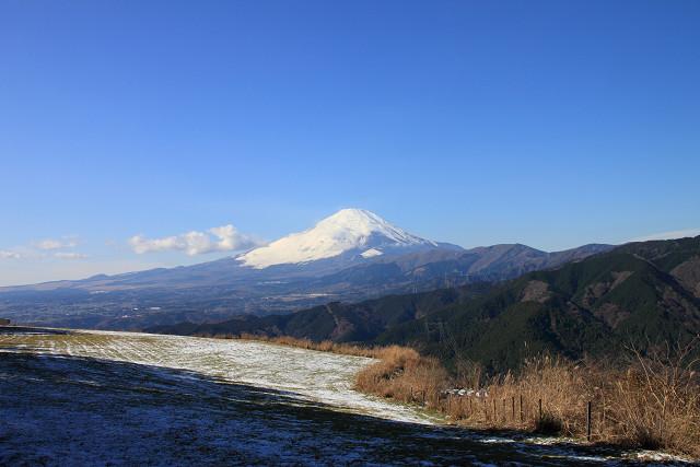神奈川022