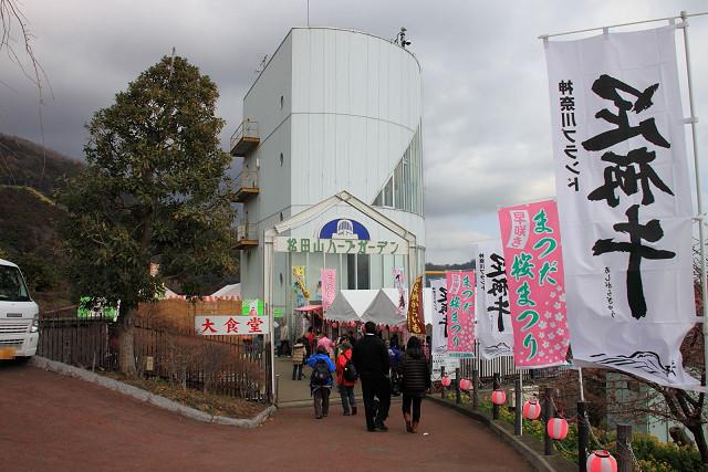 松田山005