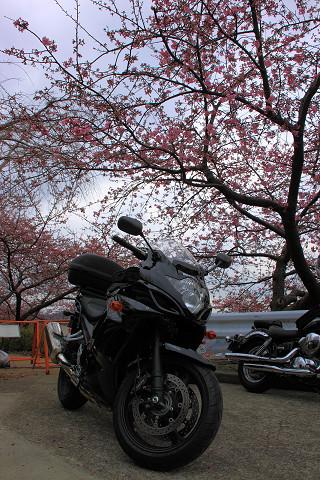 松田山018