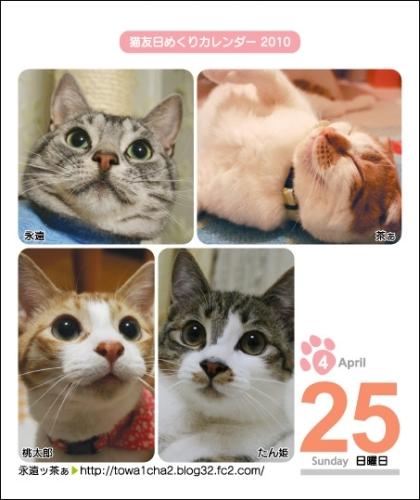 猫友日めくりカレンダー2010