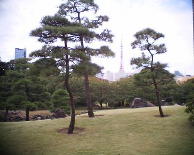 芝離宮庭園から東京タワー:R2