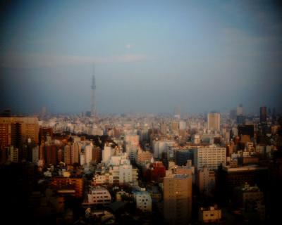 東京スカイツリーに月:Entry