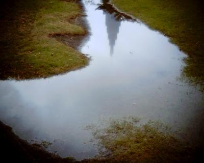 水たまりにトンボ:Entry