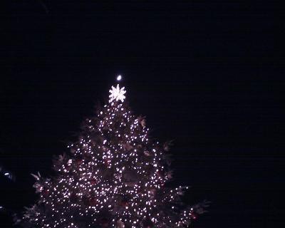 クリスマスツリーと上弦の月:R2