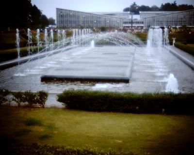 神代植物公園の噴水広場:R2