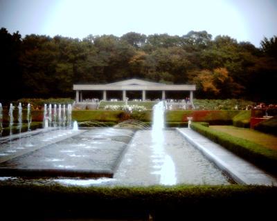 噴水・神代植物公園:Entry