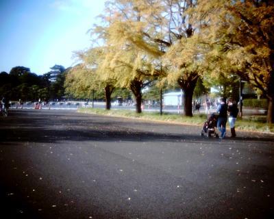 銀杏の木の下で:Entry
