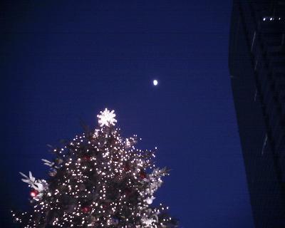 クリスマスツリーと十日月:R2