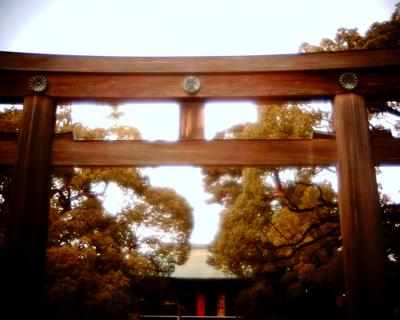 明治神宮の鳥居:Entry