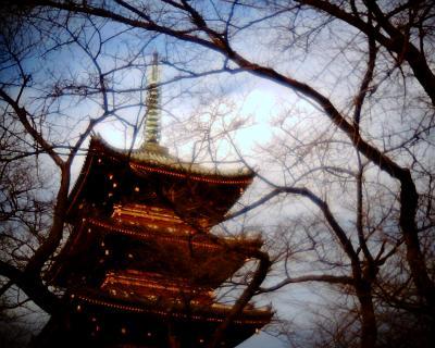 上野東照宮五重塔:Entry
