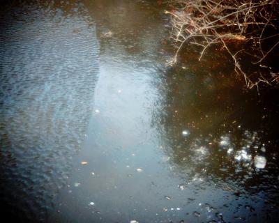 氷と水の狭間:Entry