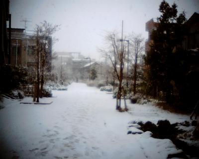 雪景色:Entry