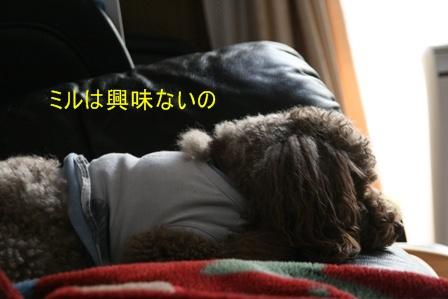 IMG_0678f.jpg