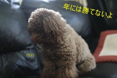 IMG_1012f.jpg
