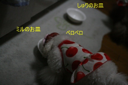 IMG_4135f.jpg