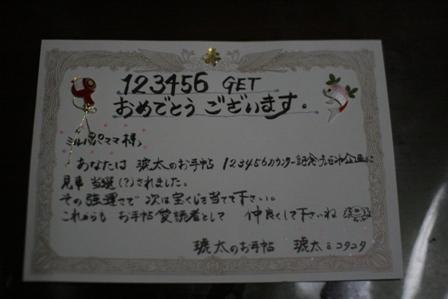 IMG_4180f.jpg