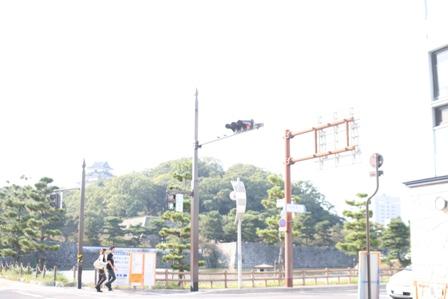 IMG_7903b.jpg