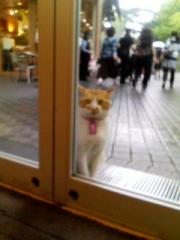 ドア前で待つ小次郎