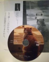 日々小次郎DVD