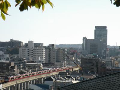 081206_gumyoji_KQ2.jpg