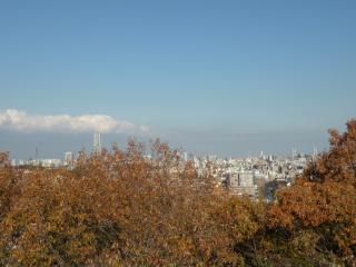 081206_gumyoji_park2.jpg