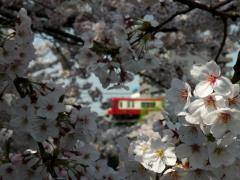 090406_KQ-Umekazakibashi2.jpg