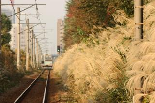 091108_JRsagamiL-Sakunokuchi_1.jpg