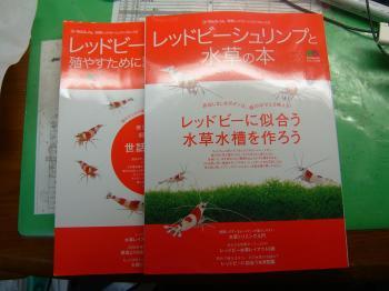 DSCF2451_convert_20091125165512.jpg