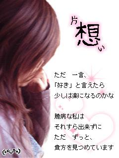 20080810_397293.jpg