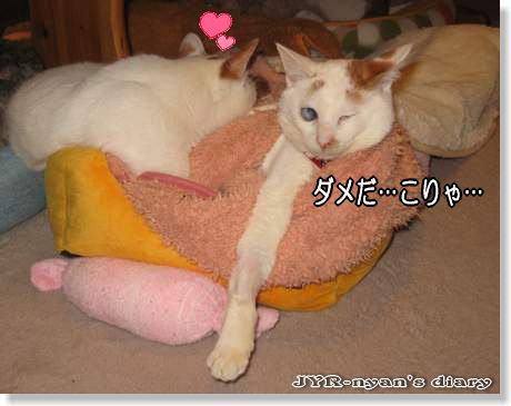 ichidai120304_10