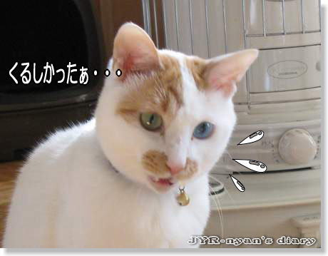 sasuke120207