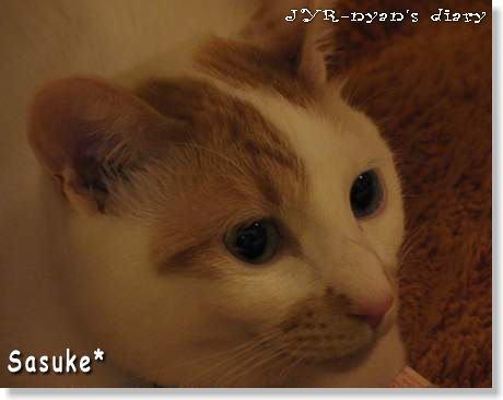 sasuke120319