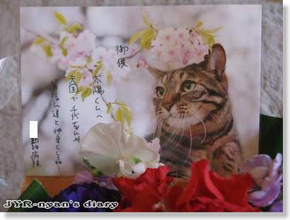 taiyo120112_5