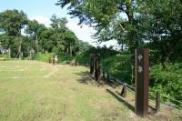 城址公園6(中郭)