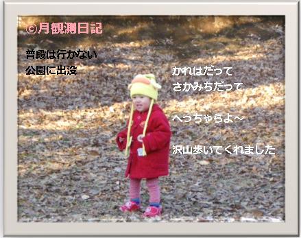 20120131tsuki2.jpg