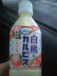 白桃&カルピス