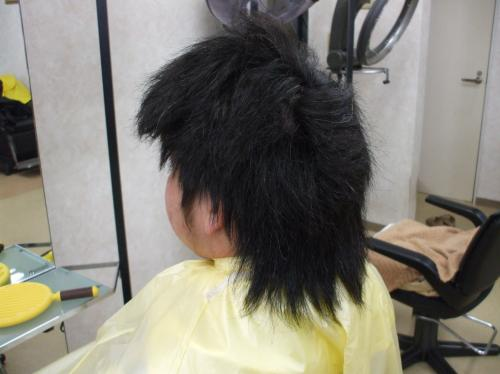 画像+002_convert_20120229150431