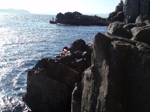 椛島二子島