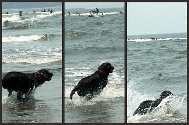 小梅in海