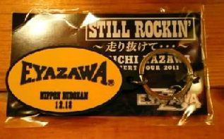 2011武道館04虎吉