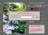 20060621160226.jpg