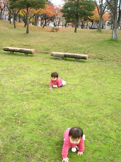 2011_1129b.jpg