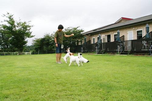 2011おでかけ323