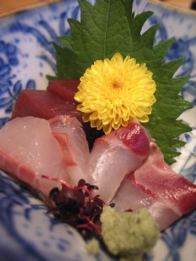 yohyousashimi