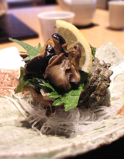 yohoumushi