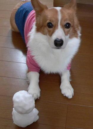 雪だるま(1)(1)